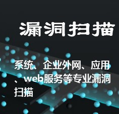企业外部网络、主机、系统、WEB服务、中间件、应用 专业漏洞扫描