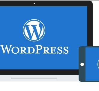 wd网站托管 discuz/dz论坛搬家/被黑木马/错误修复/dz维护/BUG修复/ WordPress代安装维护|故障排除