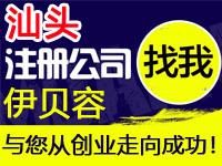 汕头注册工厂个体公司注册代办营业执照赠印刷入驻分销商城网站建设标汕头