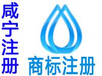 咸宁注册商标申请公司个人品牌设计商标注册咸宁赠育苗商城网站建设小程序