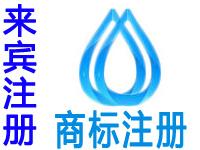 来宾注册商标申请公司个人品牌设计商标注册来宾赠环保商城网站建设小程序