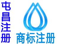 屯昌注册商标申请公司个人品牌设计商标注册屯昌赠商城网站建设小程序