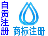 自贡注册商标注册申请公司个人软著版权实用新型外观设计发明专利小程序入驻分销商城网站建设自贡