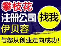 攀枝花公司注册工厂个体代办营业执照赠入驻分销商城网站建设标注册公司攀枝花