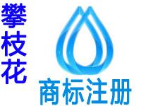 攀枝花注册商标申请公司个人品牌设计商标注册攀枝花赠商城网站建设小程序