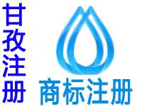 甘孜注册商标申请公司个人品牌设计商标注册甘孜赠商城网站建设小程序