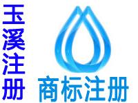 玉溪注册商标申请公司个人品牌设计商标注册玉溪赠商城网站建设小程序