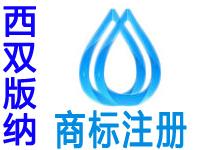 西双版纳注册商标申请公司个人品牌设计商标注册赠商城网站建设小程序