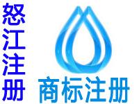 怒江注册商标申请公司个人品牌设计软著版权专利商标注册怒江赠商城网站建设小程序