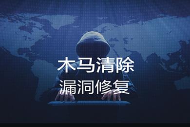 木马病毒清除 挖矿病毒清除 网页篡改修复 主机漏洞修复 安全基线检查