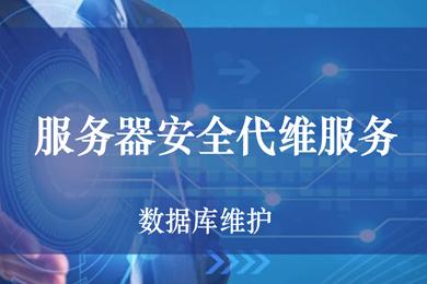 云服务器安全代维运维 阿里云代维 云主机代维 运维外包服务 服务器运维 服务器外包 服务器托管