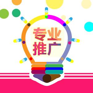 搜索引擎优化/SEO网站优化/百度推广/关键词优化【提升排名,流量转化】