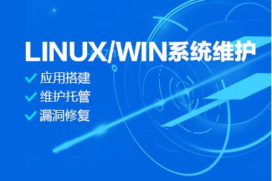 Linux/Windows服务器托管运维服务 服务器代运维 服务器安全运维