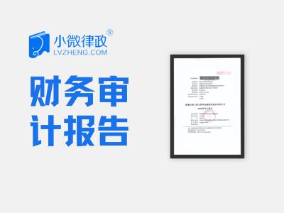 北京财务审计报告