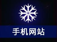 【手机网站】手机微网站/微营销/微信网站/手机网站制作
