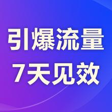 瑞蚁 官网优化 营销推广 网站推广 SEO搜索引擎优化 快速提升网站排名 索引擎推广 【超低价】