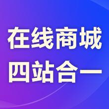 瑞蚁·云商城网站丨【免费试用】丨买二赠二(在线商城)网站建设/模板建站 720全景