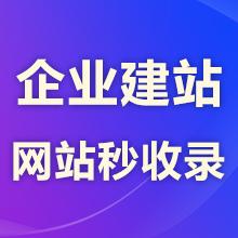 瑞蚁 【企业官网】秒收录官网 极速建站 快速收录便于推广 易于优化