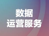 数据运营服务-河南省+湖北省