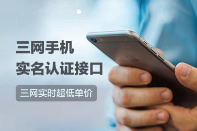 【直连0.18】手机三要素核验-三网手机实名认证接口-运营商三要素核验-电信运营商实名认证-手机号码实名认证-手机号码实名验证