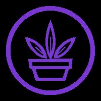 植物识别接口