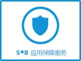 【5*8应用保障代维】持续系统监控 安全防护 保障业务稳定运行