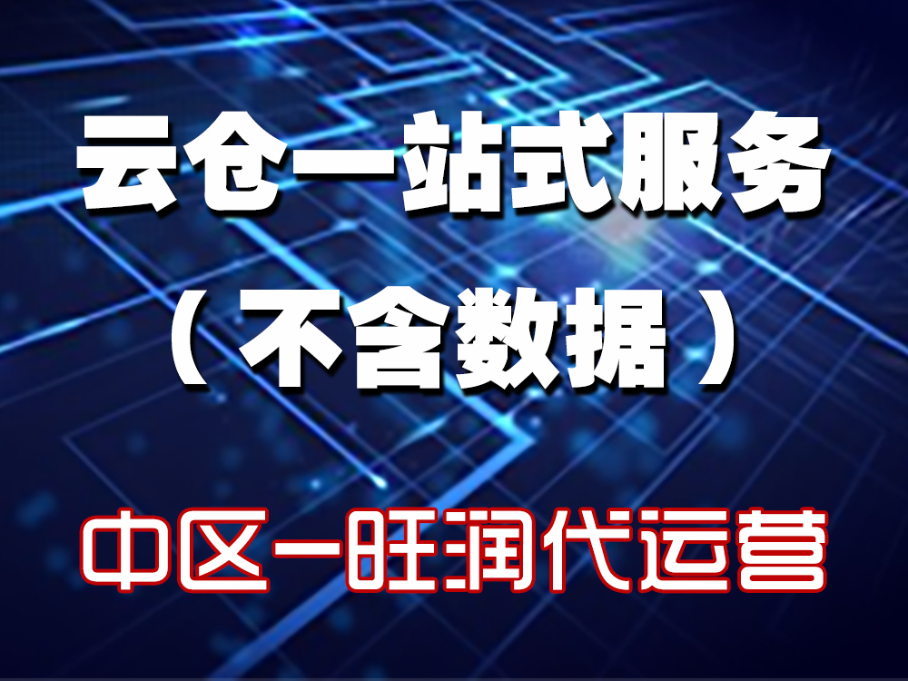云仓一站式服务(不含数据)- 湖南省+湖北省