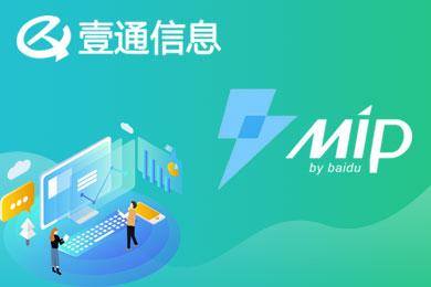 企业官网 网站建设 展示网站 中文网站 MIP网站