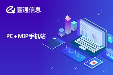 企业官网 网站建设 展示网站 中文网站 PC和MIP网站套餐