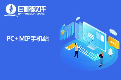 PC+MIP双站套餐