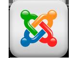 Joomla 网站管理系统 (LAMP)