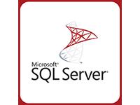 SQL Server 2008 SP2 Express(Windows2008)