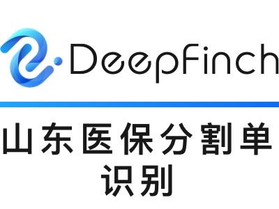【11.11打折】山东省医保分割单识别-出院结算单-费用结算单-深源恒际Deepfinch【医疗发票智能识别】