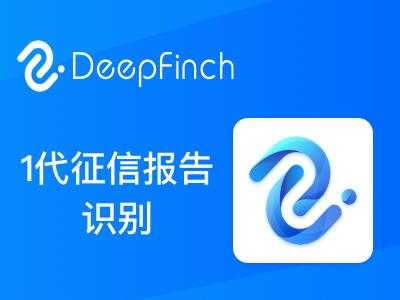 人行1代征信报告OCR识别API-深源恒际同步接口【个人信用报告解析】